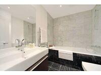 One Bedroom Furnished Flat in Knightsbridge