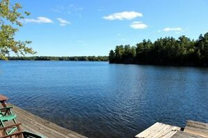 *WOW* Clean Deep Waterfront STONEY LK! Brad Sinclair Flat Rate