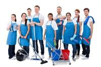 Responsible Cleaners at Your Disposal