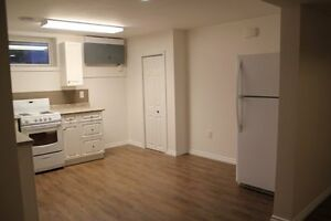 Completely renovated 930 sq ft two bedroom duplex on lower level