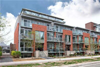 Queen/Carlaw~1BR THOUSE~CLOSE TO ALL~LOWEST PRICE~MUST C