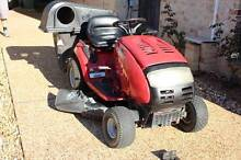 MTD Troy-Bilt  Ride On Mulcher Pedal Drive with Cruise Control Warner Pine Rivers Area Preview