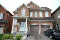 breathtaking walkout 2 BR basement in castlemore,brampton
