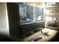 40 inch 1080p Freeview HD Sony TV reduced
