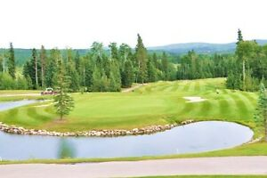 Wintergreen Golf Membership incl 2016 dues for 2 people c/w cart
