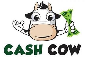 EMERGENCY MORTGAGE LOANS FOR HOMEOWNERS!!---Call Cash Cow Deb!!