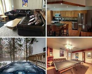 8 Bed Blue Mountain Chalet Sleeps 20