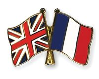 French and ESL tutor (face to face or skype)