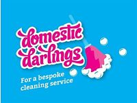 Domestic Cleaners in Hamble, Netley, Locksheath and other areas