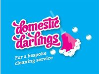 Domestic Cleaners in Locksheath, Warsash, Hamble, West End & other areas