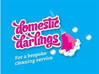 Domestic Cleaners in Hamble, Netley, Burridge, Locksheath & other areas
