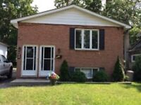 Large 3 bedroom lower level duplex newly renovated