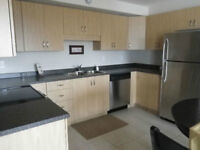 Beautiful New Luxurious 2 bedrooms, plenty of parking
