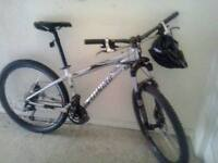 Specialized Mountain Bike- M