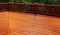 Deck/fence staining