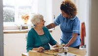 Help with seniors - companion, housework, drives & more