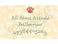All About Animals pet services and grooming