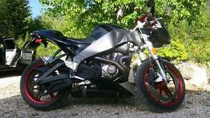 2007 buell firebolt xb12r mint 5300 kms trade or cash