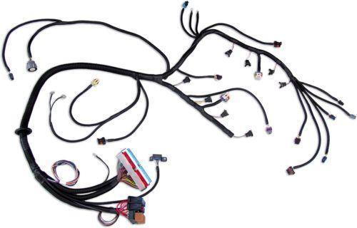 lq4 wiring harness 19 sg dbd de \u2022ls stand alone harness ebay rh ebay com lq4 painless wiring harness lq4 engine wiring harness