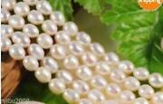 Loose Pearls Akoya