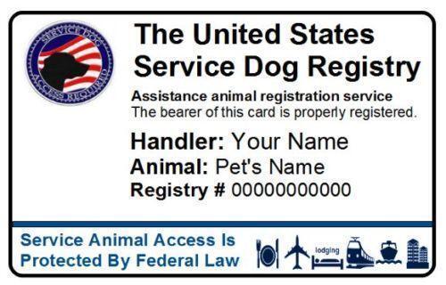 service dog id |