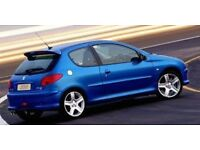Breaking for parts Peugeot 206 gti 180