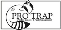 GOT MICE OR RATS CALL PRO TRAP 519-816-6968