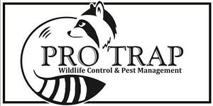GOT MICE OR RATS ??? CALL 519-816-6968