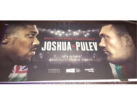 2x FLOOR Anthony Joshua vs Carlos Takam tickets (pulev)