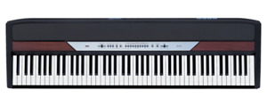 Korg SP-250 Digital Piano Weighted Keyboard
