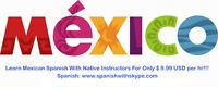 Spanish Lessons Online With Native teachers via Skype