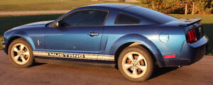 2007 Ford Mustang Pony Package Coupe (2 door) Kitchener / Waterloo Kitchener Area image 1