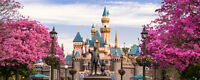 A Trip to Disneyland!