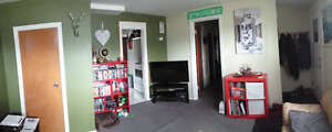 Lovely Bright 1 Bedroom plus den in beautiful Forest Heights