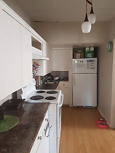 950 sq ft- Large Renovated Student Apt.- 400 feet to New College