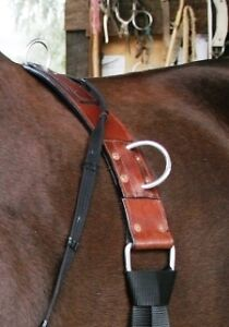 AUSTRALIAN SADDLES, TACK, BITS, TRAINING AIDS, DVD, ROPE Kingston Kingston Area image 2