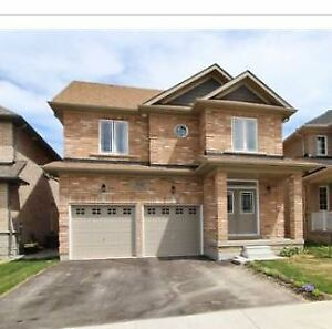 ⭐️  ✨ ⚡️ Great Home for Lease In BRADFORD GW