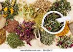 Nostalgia, Herbs and More
