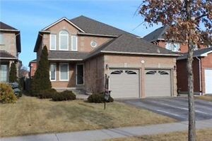 Gorgeous Woodbridge House Available for Rent! Basement Included