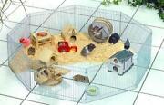 Hamster Freilauf