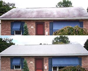 ROOF AND CONCRETE CLEANING Airlie Beach Whitsundays Area Preview