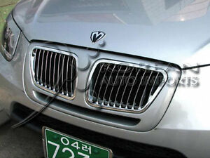 BMW style grill for Santa fe