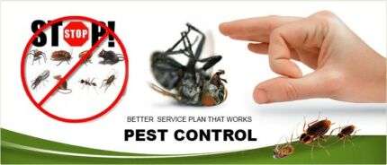 ALL GONE PEST CONTROL TREATMENT FROM $80