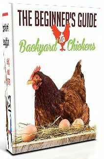 The Beginner's Guide to Backyard Chickens - 2015 FREE Guide! Keysborough Greater Dandenong Preview
