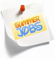 Grade 9 Student Summer Job