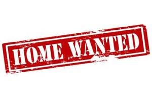 Looking to buy a RANCH home in Windsor, Tecumseh or Lasalle