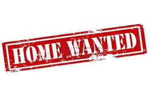 Wanted: Family urgently seeking private house to rent Gympie area Gympie Gympie Area Preview
