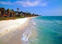 Wow!!...April is Amazing in Naples,Fla.from $695.00* 2 wk.min*