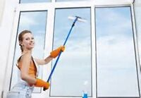 FULL CLEANING - WINDOWS, CARS, CARPETS, HOMES, YARDS
