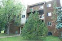 1 Bedroom with big living room Apartment in Camrose for rent